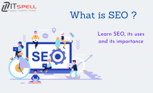 is SEO by the SEO Agency in Noida | iTspell Technology